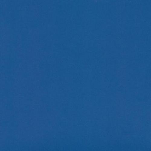 sinij-glyanets-dm-309-6t