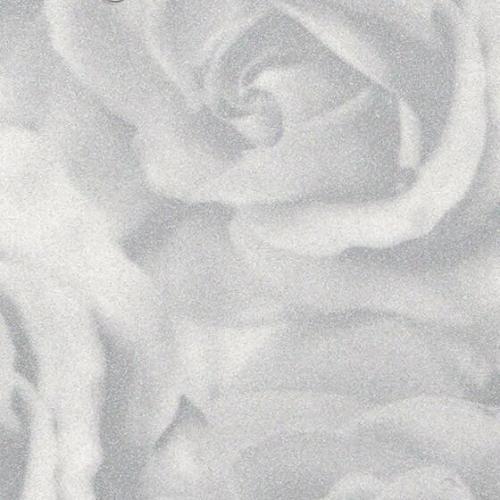 roza-serebristaya-tm-434